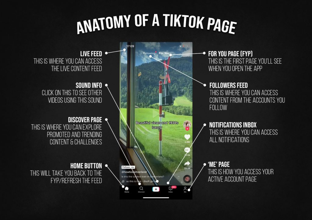 An image showing the anatomy of a TikTok page, as displayed on a mobile phone.